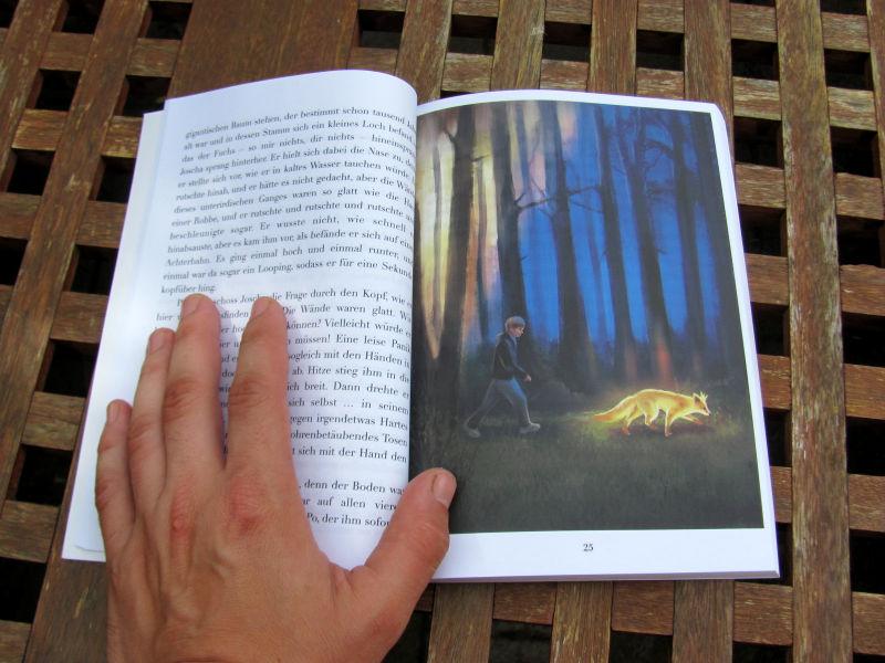 Buch Joscha Pietsch